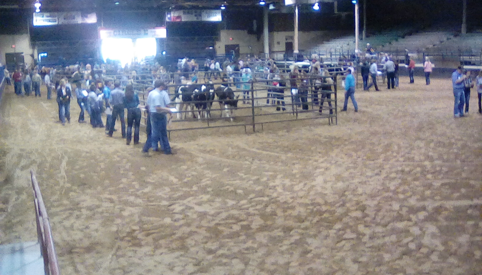 Students walk around pens of livestock as they answer questions on their clipboard.