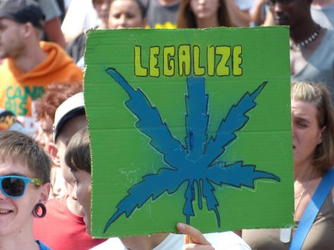 Marijuana use goes up with higher enrollment