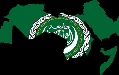 Model Arab League Comes to Commerce