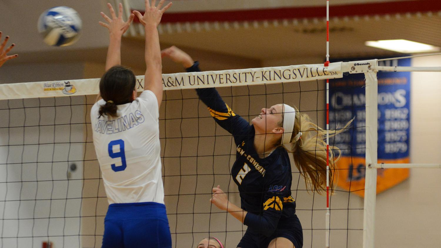 Lions earn a point with a spike from Jaryn Wacker.