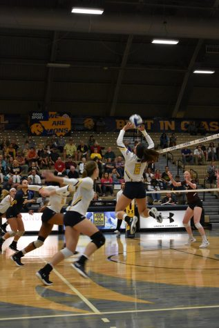 No. 25 Lions sweep Javelinas