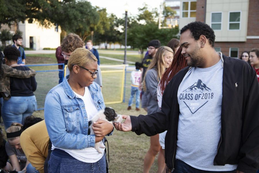 Students feed a piglet at the petting zoo. East Texan Photo | John Parsons