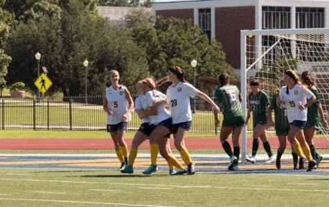 Lion Soccer looking ahead to conclusion of LSC play