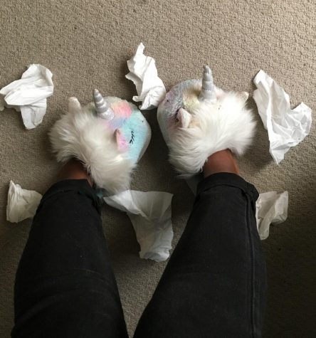 Image of slippers and tissues.