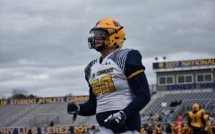 Lion Spring Game Photo Gallery