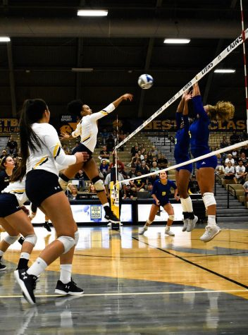 Texas A&M-Commerce Volleyball Preview 2019