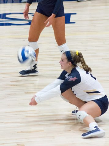 Lion volleyball sweeps Texas A&M University-Kingsville [Photo Gallery]