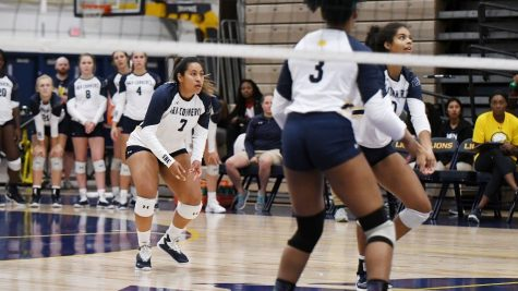 Lions Volleyball sweeps pair of weekend games