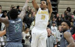 Lions glide past Drovers; road game next at UT Tyler