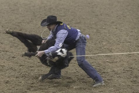 University hosts its first-ever home rodeo