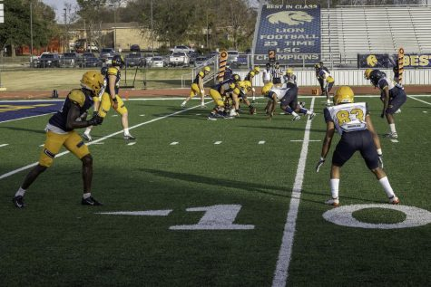 Lion Football Fall Game [Photo Gallery]