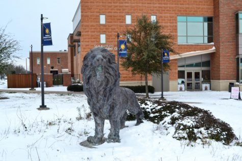 A snowy Lucky the Lion guards the Rayburn Student Center.